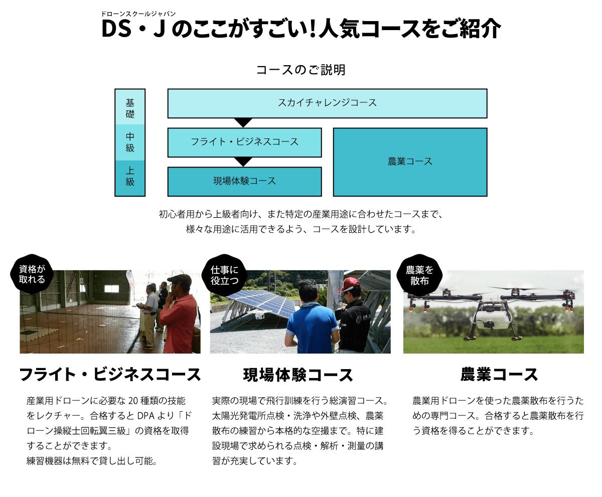 DS・Jのここがすごい!人気コースをご紹介