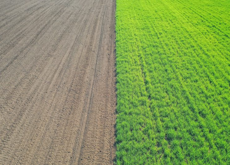 ドローンを使った農薬散布の基礎知識と手続きの流れ
