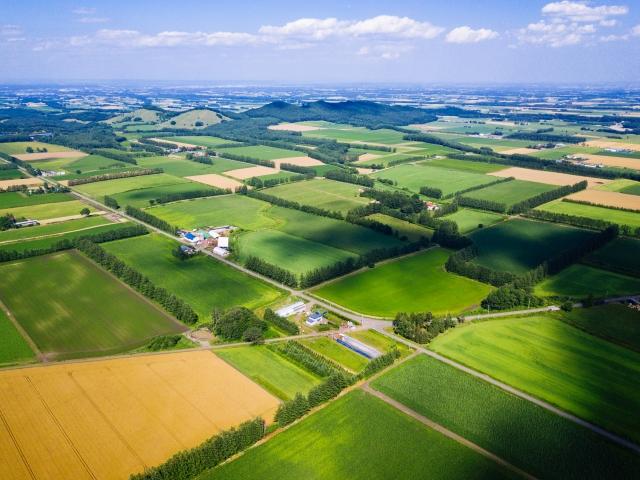 農業でのドローン活用の未来は明るい!スマート農業加速化実証プロジェクトとは