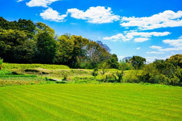 2種類ある?!スマート農業実証プロジェクトの開発・実証プロジェクトとは
